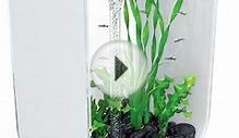 Fashion Fish: BiOrb Brightens Your Home With Hip Aquarium